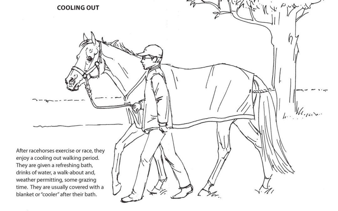 LongRun's Activity Book page 13
