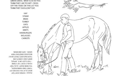 LongRun's Activity Book page 14