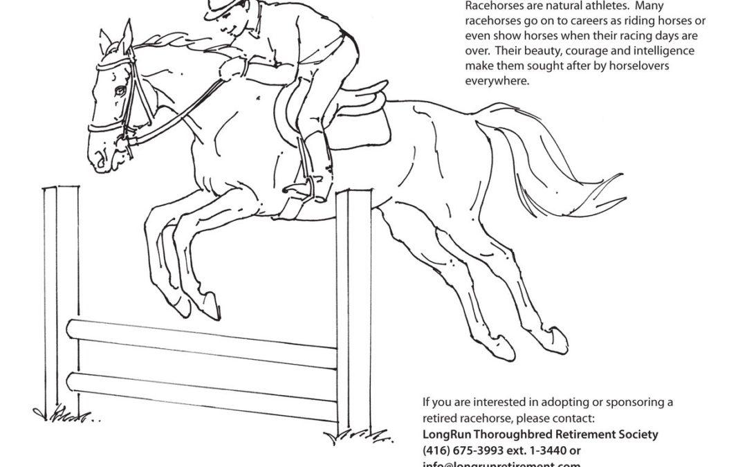LongRun's Activity Book page 15