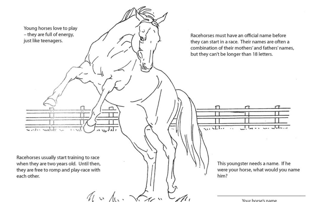 LongRun's Activity Book page 6